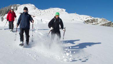 Photo of Winter nordisch