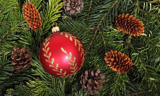 f ssen aktuell w nscht frohe weihnachten und viele. Black Bedroom Furniture Sets. Home Design Ideas