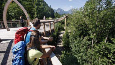 Photo of Baumkronenweg in Füssen geht in die zweite Saison