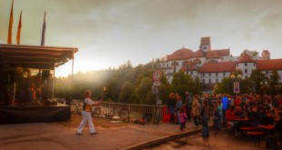 Stadtfest 2014 (9)