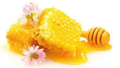 Photo of Honig – Gesundheit aus dem Bienenstock