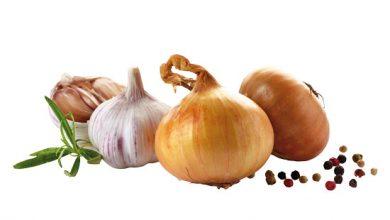 Photo of Knoblauch und Zwiebeln – die tollen Knollen