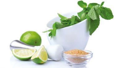 Photo of Pflanzliche Limonaden – die gesunde Erfrischung