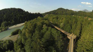 Photo of 15 Jahre Walderlebniszentrum – Der Natur auf der Spur