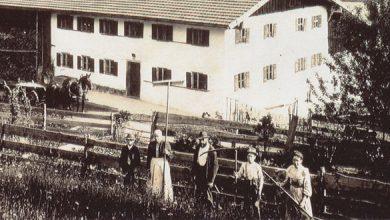 Photo of Buchinger Heimat