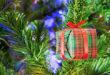 Weihnachtsmärkte im Füssener Land und dem Ausserfern